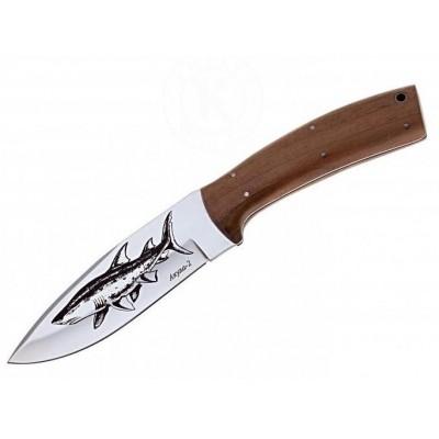Нож г. Кизляр, Акула-2 (65х13)
